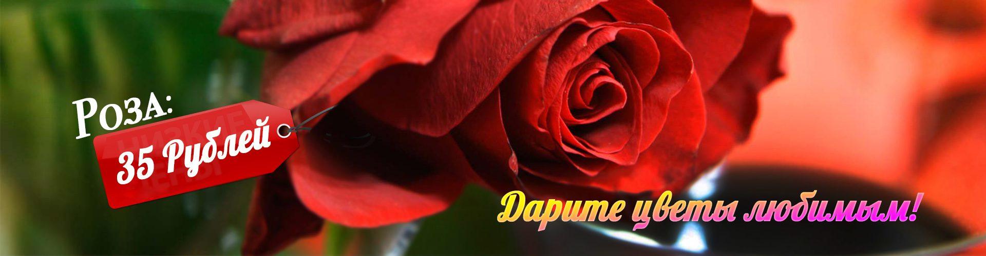 розы по 35 рублей каменск-уральский